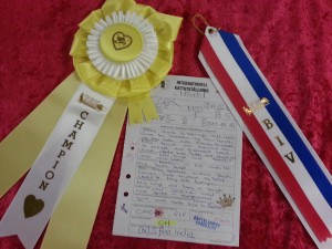 India CH ribbons